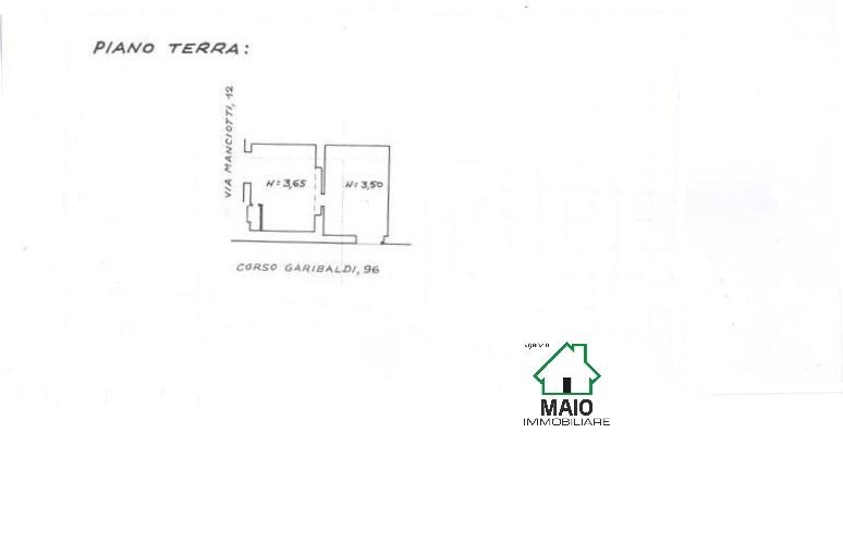 PLANIMETRIA C.GARIBALDI LOC COMM 001 (Medium)